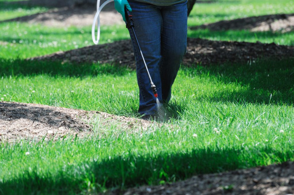 Weed Control and Mapping